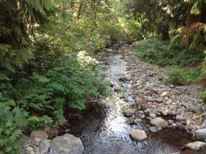 Delph Creek